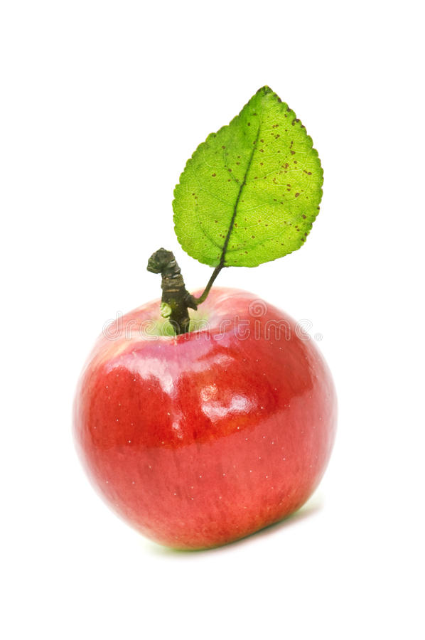 Apple foto de stock