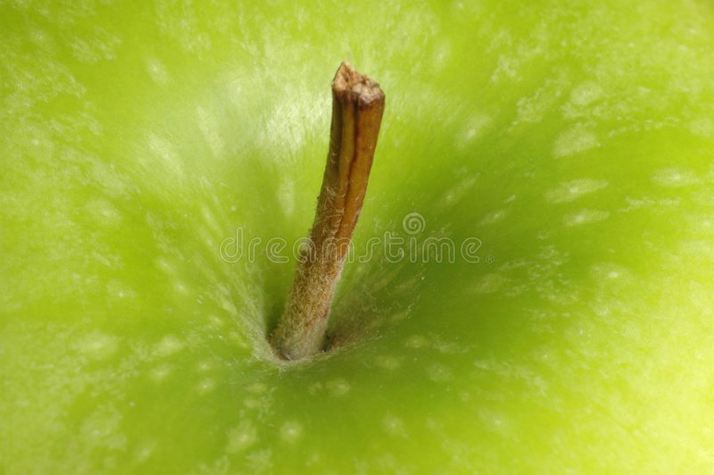 Download Apple stock photo. Image of coloseup, apple, fruit, nutrition - 159740
