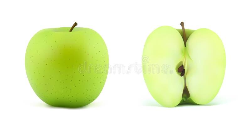 Download Apple ilustração do vetor. Ilustração de suculento, vegetariano - 16870933