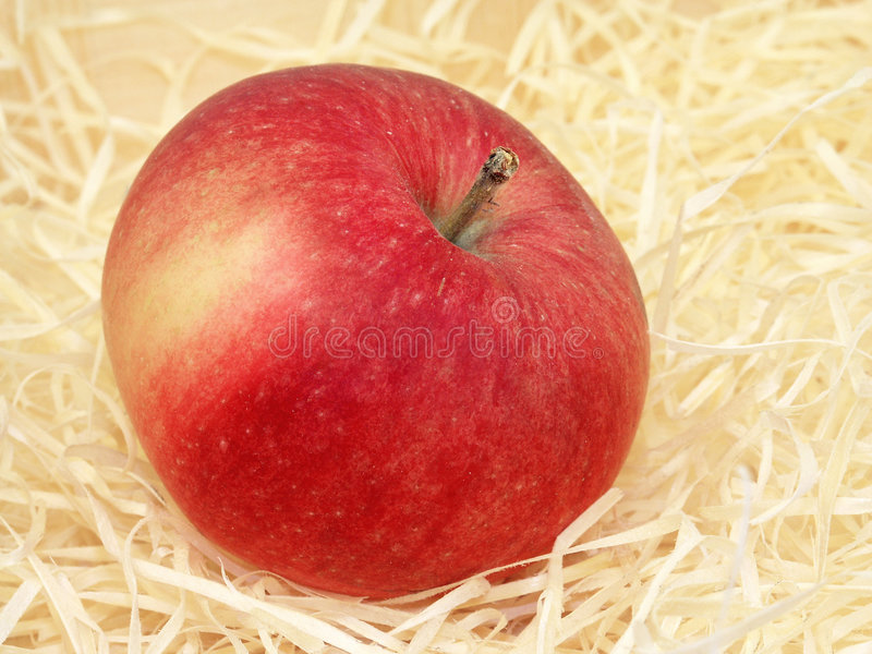 Download Apple stock photo. Image of healthy, tempting, apple, tasty - 171992