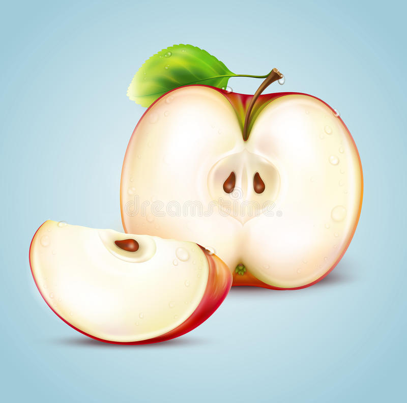 Download Apple stock vector. Image of delicious, agriculture, blue - 25351323