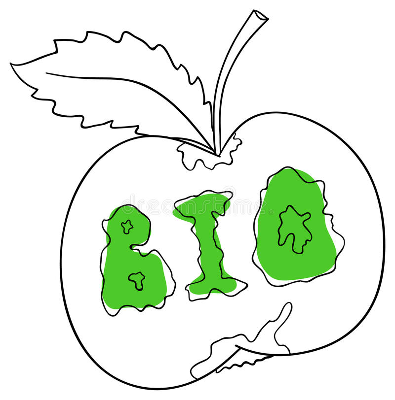 The apple vector illustration