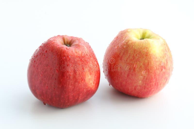 Apple 库存照片