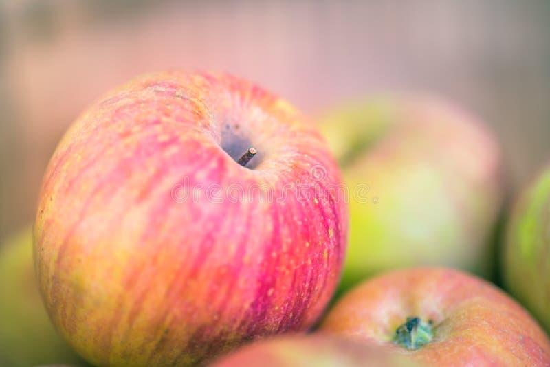 Download Apple στοκ εικόνες. εικόνα από υγιής, ρομαντικός, πρότυπο - 62717526