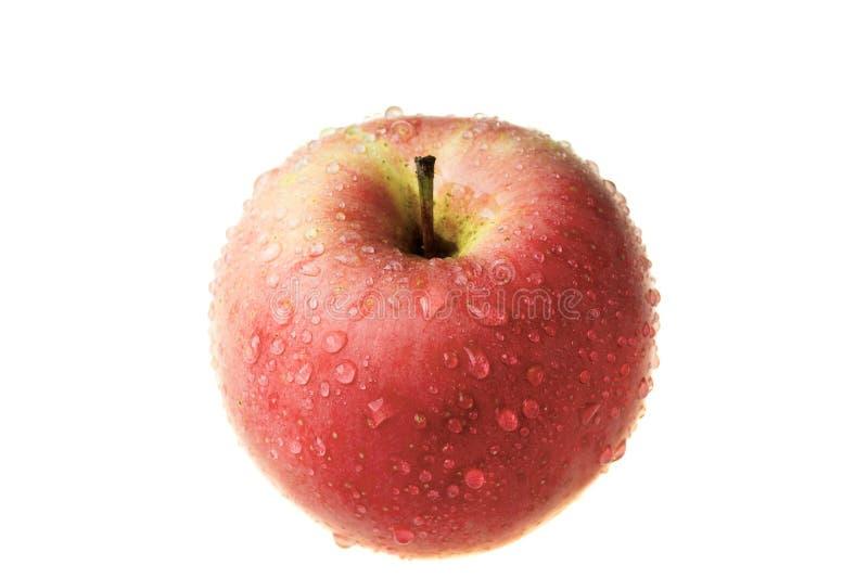 Download Apple foto de archivo. Imagen de delicioso, verde, fruta - 7288020
