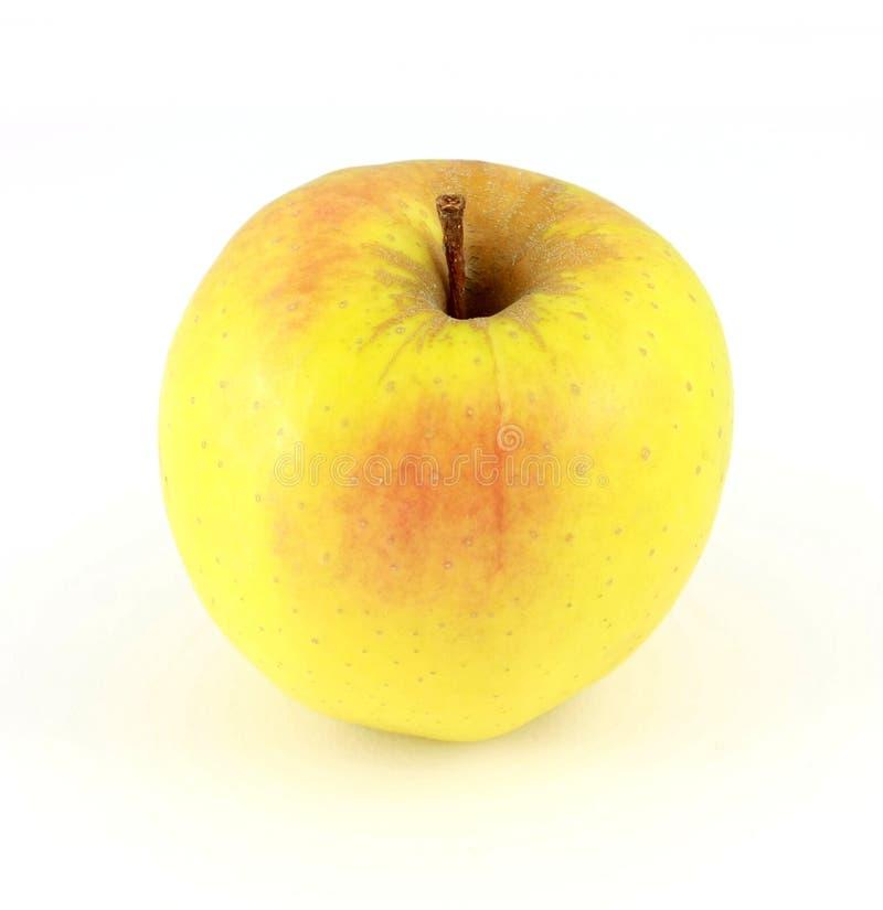 Download Apple imagen de archivo. Imagen de blanco, aislado, nutrición - 7288063