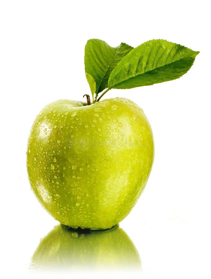 Free Apple Royalty Free Stock Photo - 9131355
