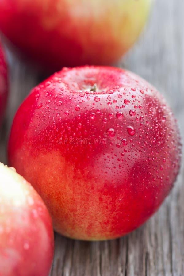 Download Apple-Abschluss oben. stockfoto. Bild von nave, sommer - 27725830