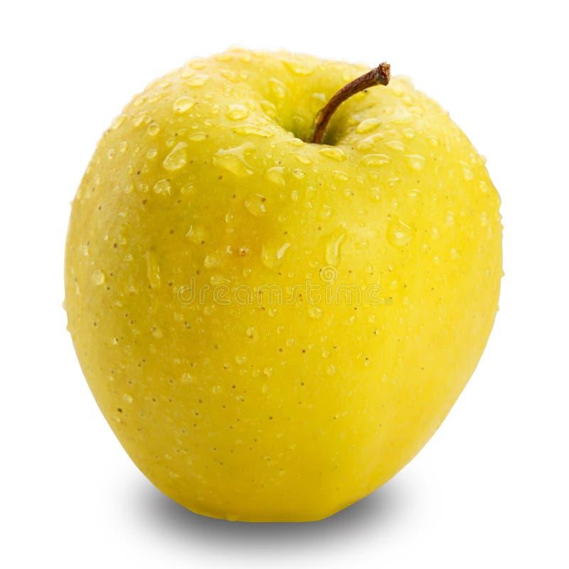 Apple amarelo isolado no fundo branco com trajeto de grampeamento imagem de stock royalty free