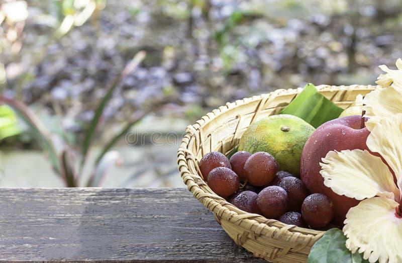 Apple, arancia ed uva nei canestri di bamb? del tessuto con gli alberi confusi del fondo floreale delle decorazioni immagine stock libera da diritti