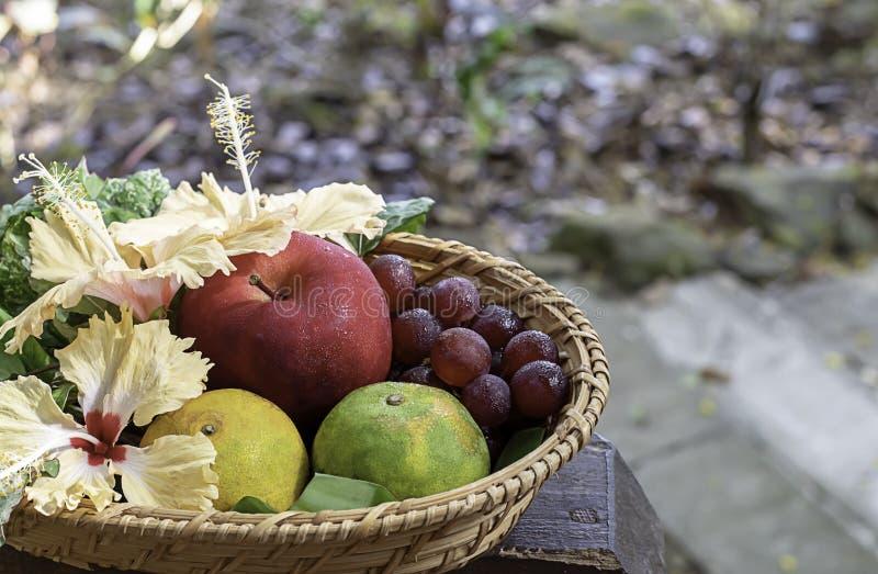 Apple, arancia ed uva nei canestri di bamb? del tessuto con gli alberi confusi del fondo floreale delle decorazioni fotografia stock