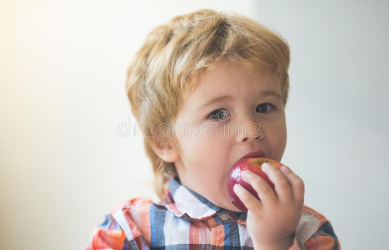 Apple as a snack. Fruit for children. Healthy eating. Autumn harvest. A little cute boy bites an apple. Delicious food stock photos