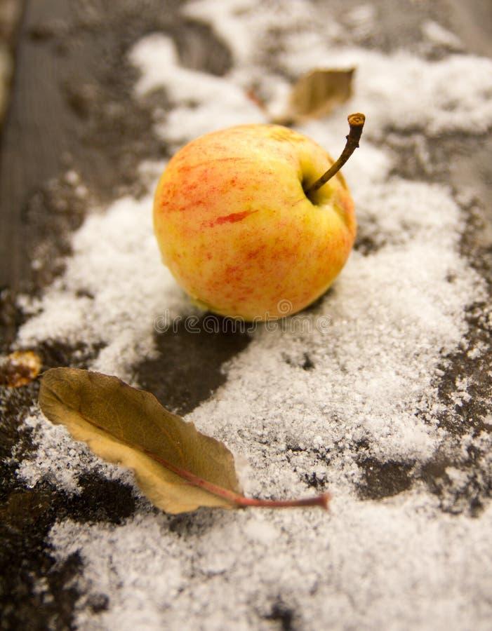 Apple auf dem Schnee Oktober-erste stockbilder