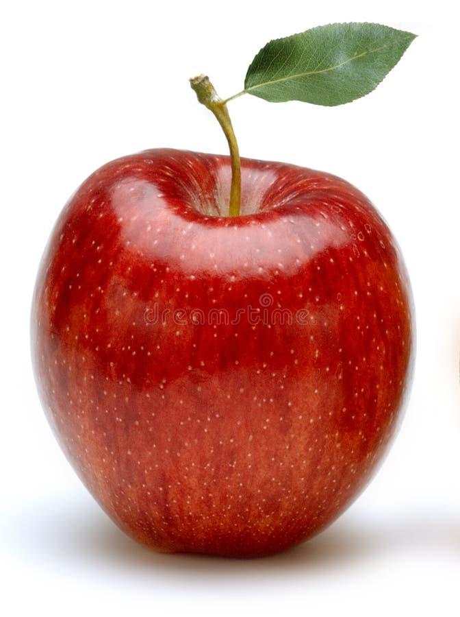 Apple auf Weiß stockfoto