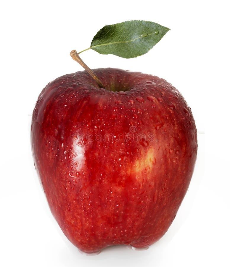 Apple avec de l'eau les baisses et photographie stock libre de droits