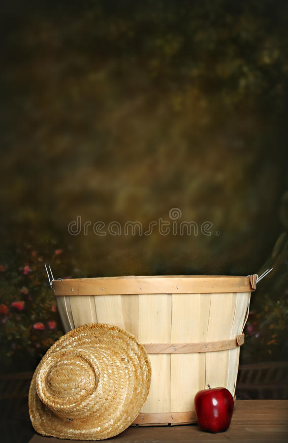 Free Apple Basket Royalty Free Stock Photo - 12908955