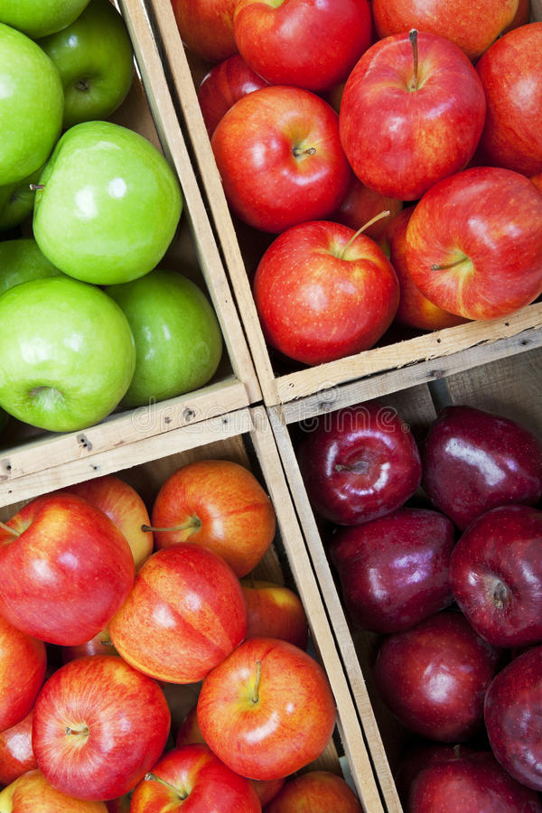 Download Apple Bins stock image. Image of green, assortment, nutritious - 27245389