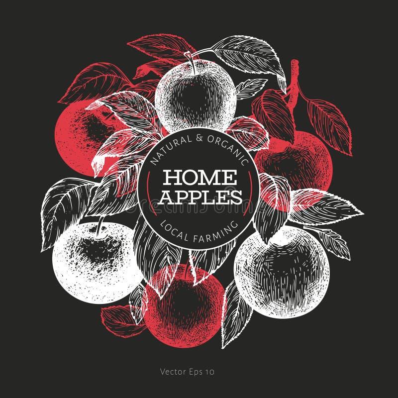 Apple branche design template. Hand drawn vector garden fruit illustration on chalk board. Engraved style fruit frame. Retro royalty free illustration