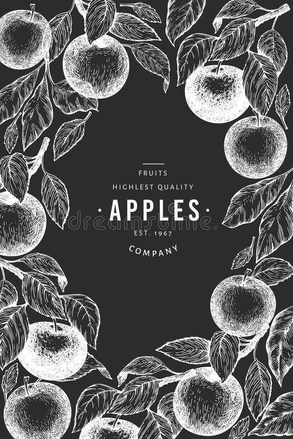 Apple branches design template. Hand drawn vector garden fruit illustration on chalk board. Engraved style fruit frame. Vintage stock illustration