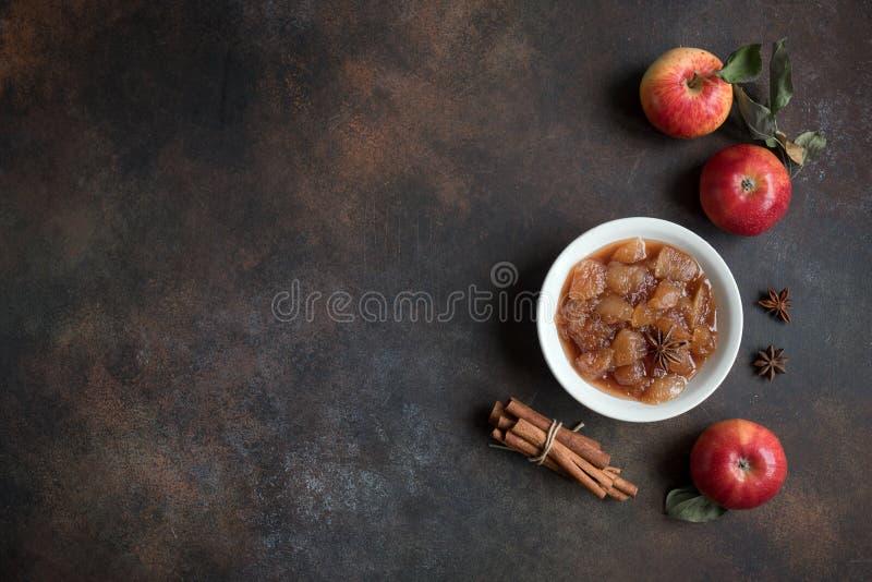 Apple chutney royaltyfri foto