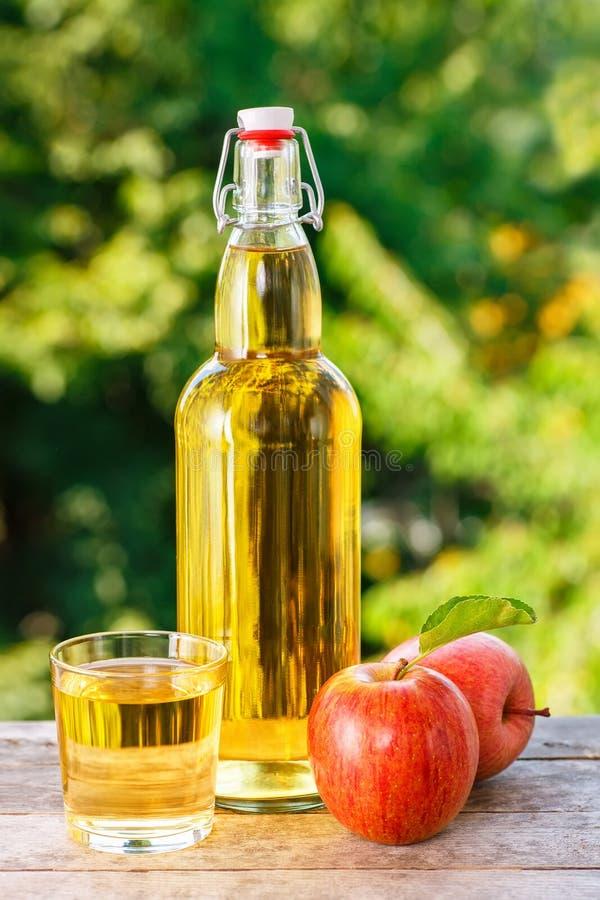 Apple-cider in glas stock afbeeldingen