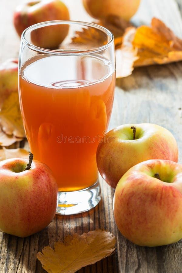 Apple-cider klaar te drinken en rijpe organische appelen royalty-vrije stock foto's