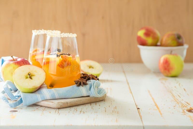 Apple-cider met kaneel en anijsplant stock foto's