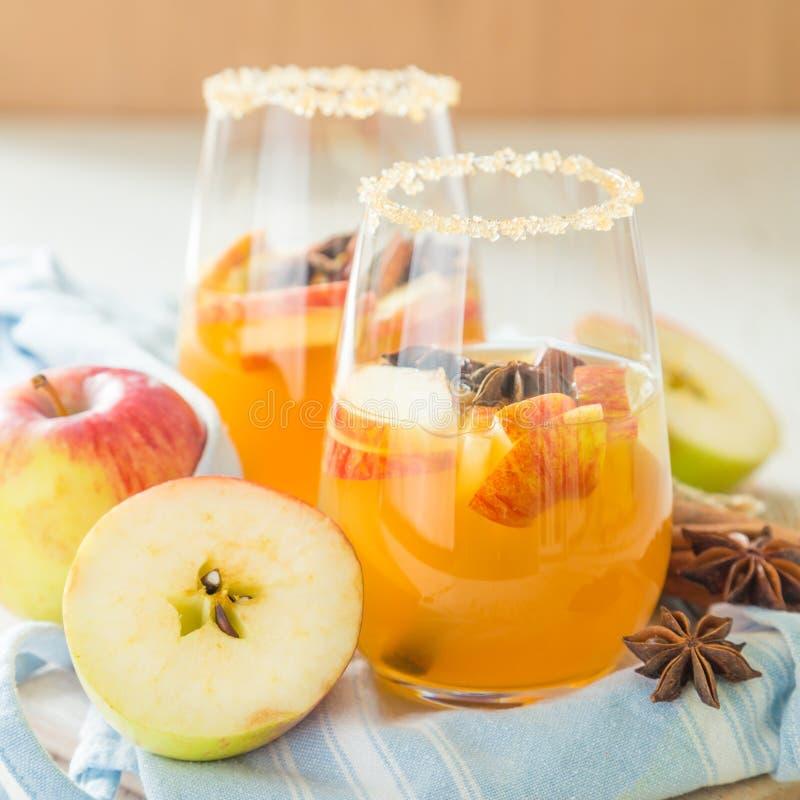 Apple-cider met kaneel en anijsplant stock afbeelding