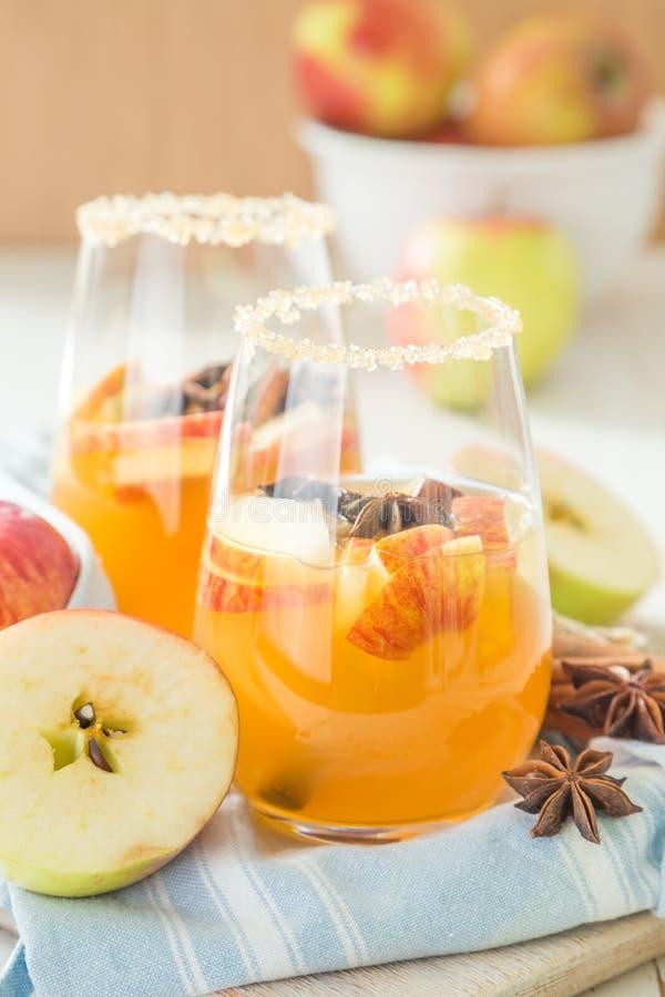 Apple-cider met kaneel en anijsplant stock foto