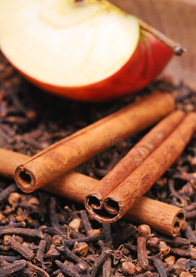 Apple &cinnamon arkivbild