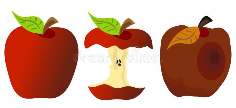 Apple comido y putrefacto del conjunto ilustración del vector