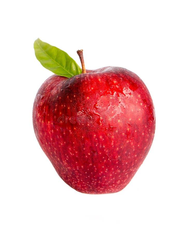 Download Apple Con La Foglia Isolata Fotografia Stock - Immagine di foglio, agricoltura: 55360030