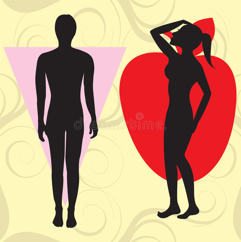 Free Apple Cone Body Type Royalty Free Stock Images - 11516569