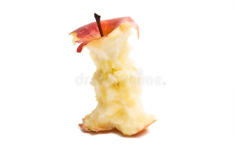 Apple core isolated. On white background royalty free stock photography