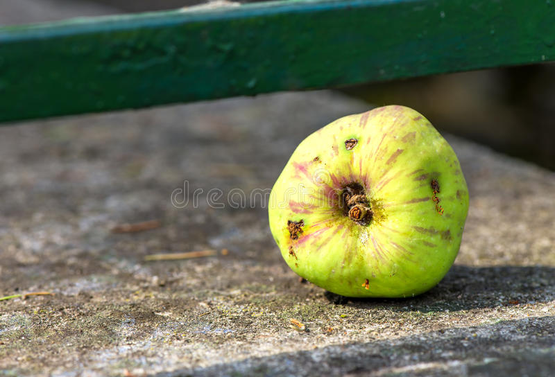 Apple danificado foto de stock