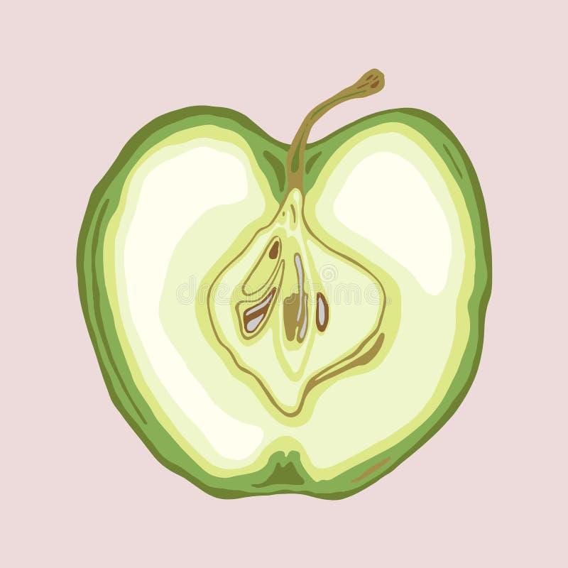 Apple in de helft met zaden wordt gesneden dat vector illustratie