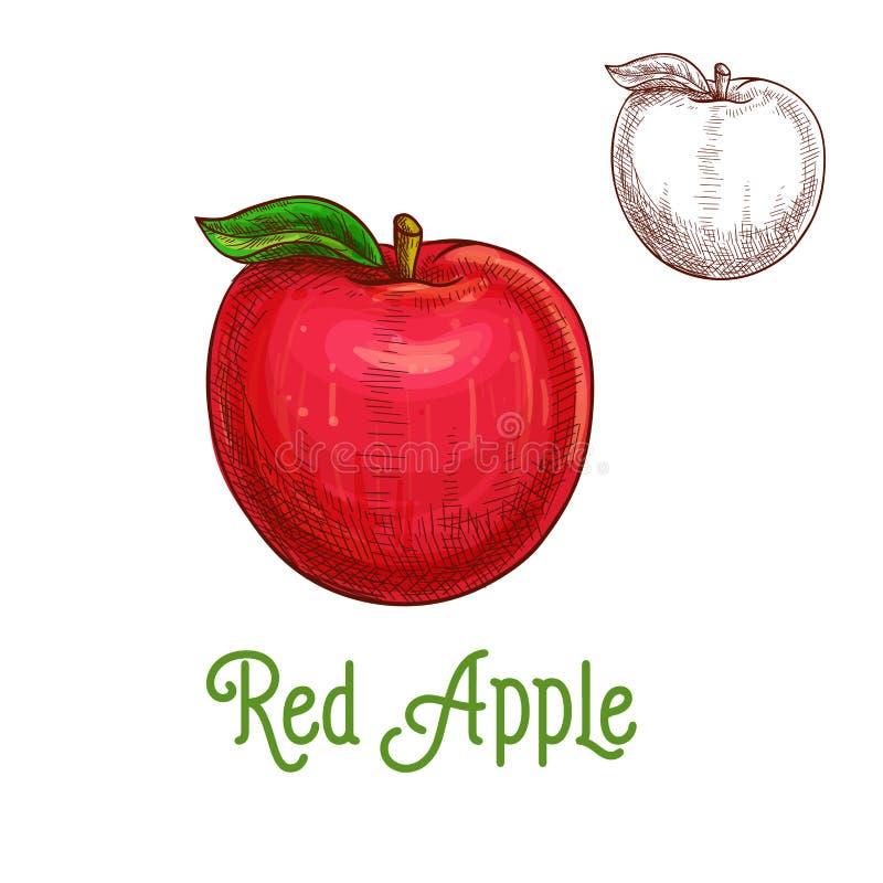 Apple dirigent l'icône de fruit d'isolement par croquis illustration de vecteur