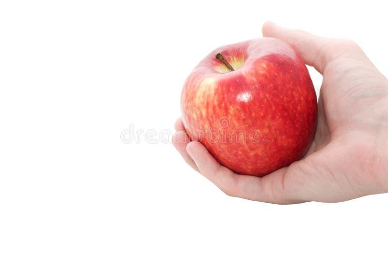 Apple a disposizione immagine stock libera da diritti