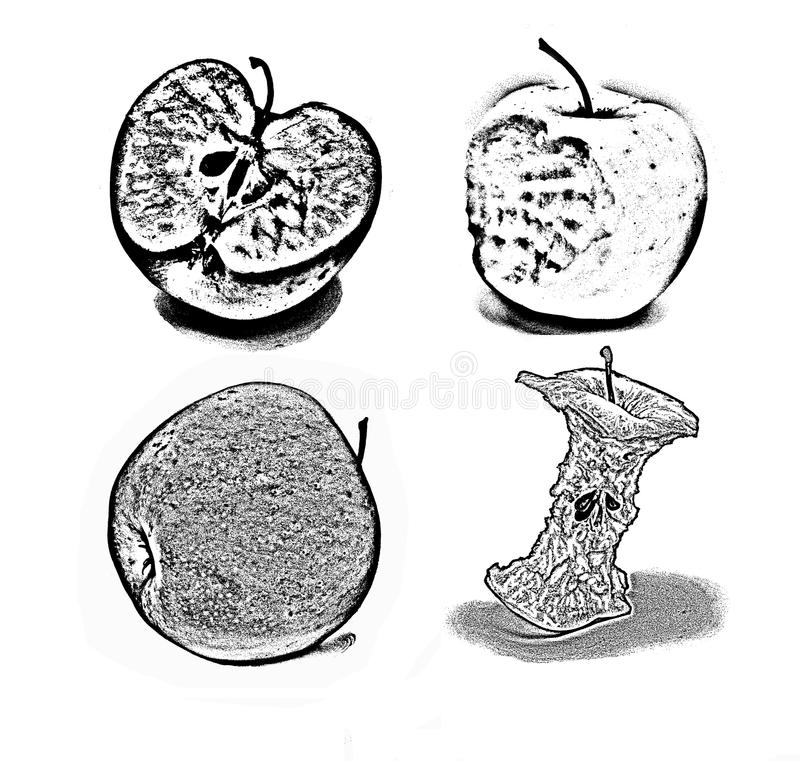 Download Apple Drawing Black White Stock Illustration - Image: 83719256