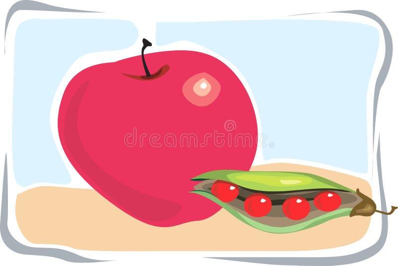 Apple e fagioli illustrazione vettoriale
