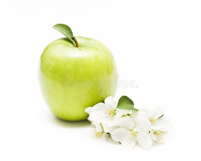 Apple e flores imagens de stock