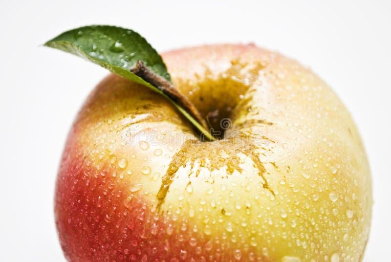 Apple e flores fotos de stock royalty free