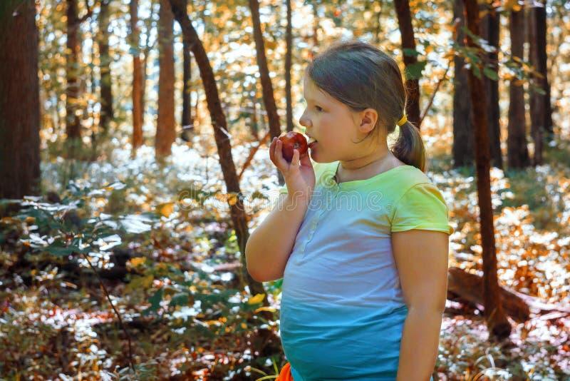 Apple en la muchacha hermosa que come Apple orgánico en la huerta cosecha fotos de archivo