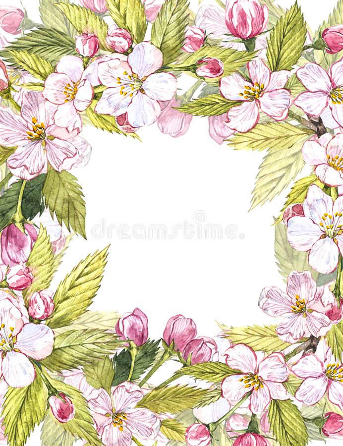 Apple Enmarca El Ejemplo Botánico Diseño De Tarjeta Con Las Flores Y ...