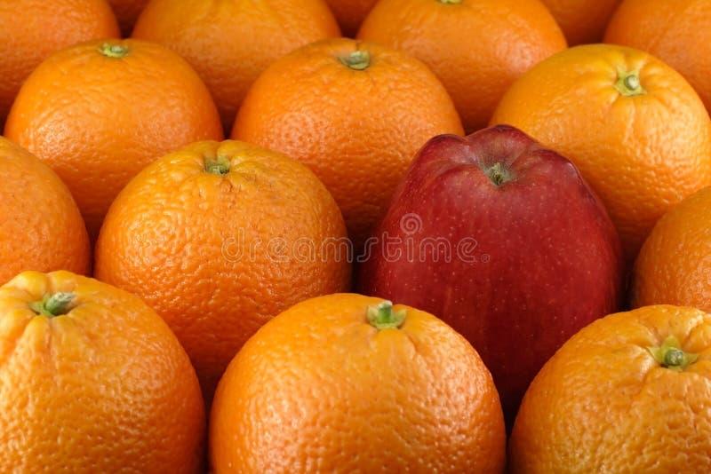 Apple entre laranjas fotos de stock
