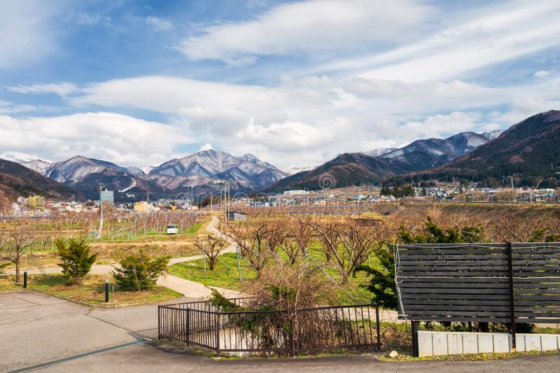 Apple farm with central alps, Yamanouchi. Apple orchard farm with central alps background in Yamanouchi, Nagano, Japan. Here is famous in monkey snow park, ski royalty free stock photography