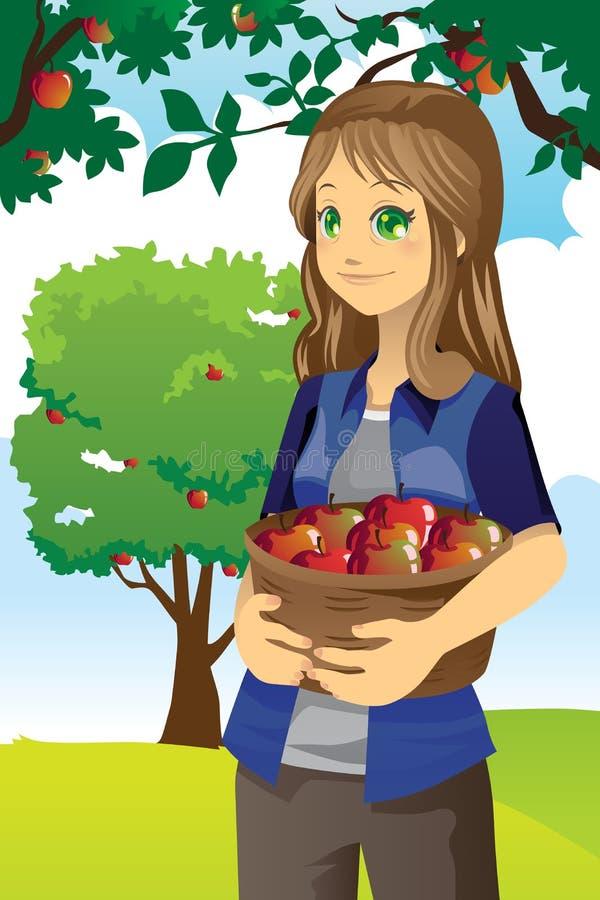 Download Apple farmer stock vector. Image of orchard, farm, girl - 23194154