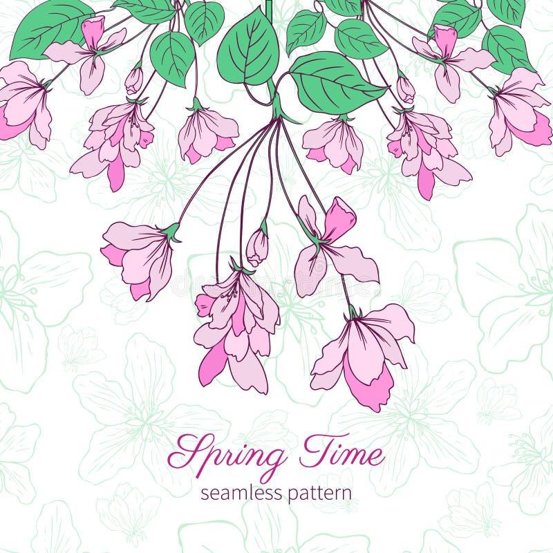 Apple floresce a ilustração tirada da flor mão colorida isolada no fundo verde, teste padrão floral do vetor sem emenda ilustração royalty free