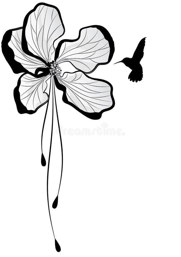 Apple flower and hummingbird stock illustration