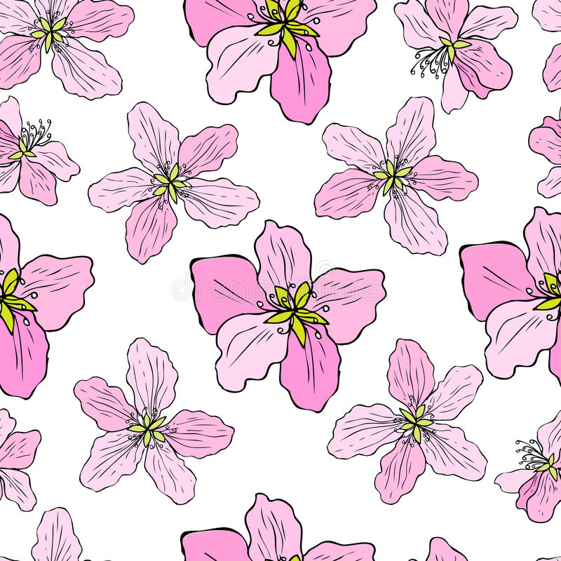 Apple flower tree blossom colorful botanical sketch hand drawn isolated on white, seamless vector floral pattern, pink vector illustration